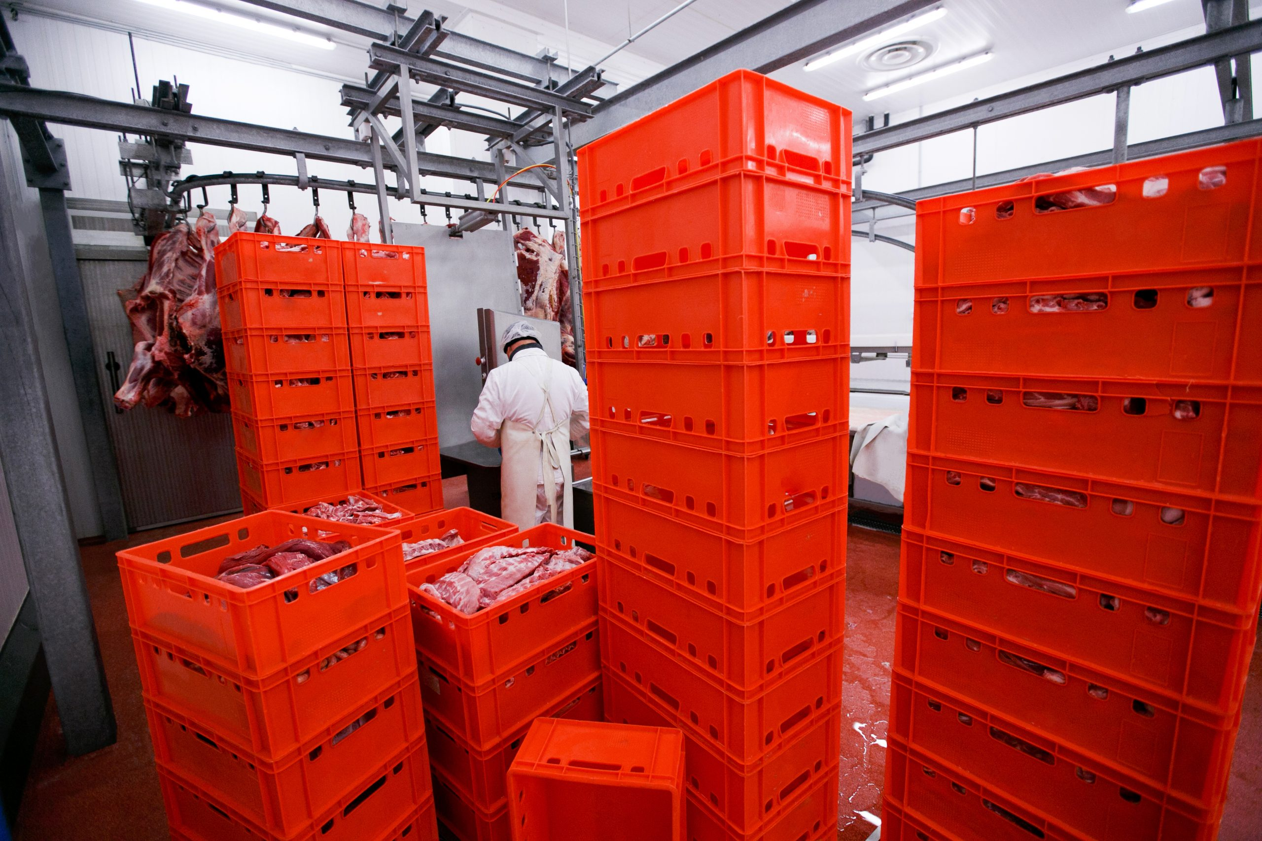 A lot of plastic red boxes with chopped fresh raw meat, a worker arranged a stored in a meat factory, industry process. Horizontal view.